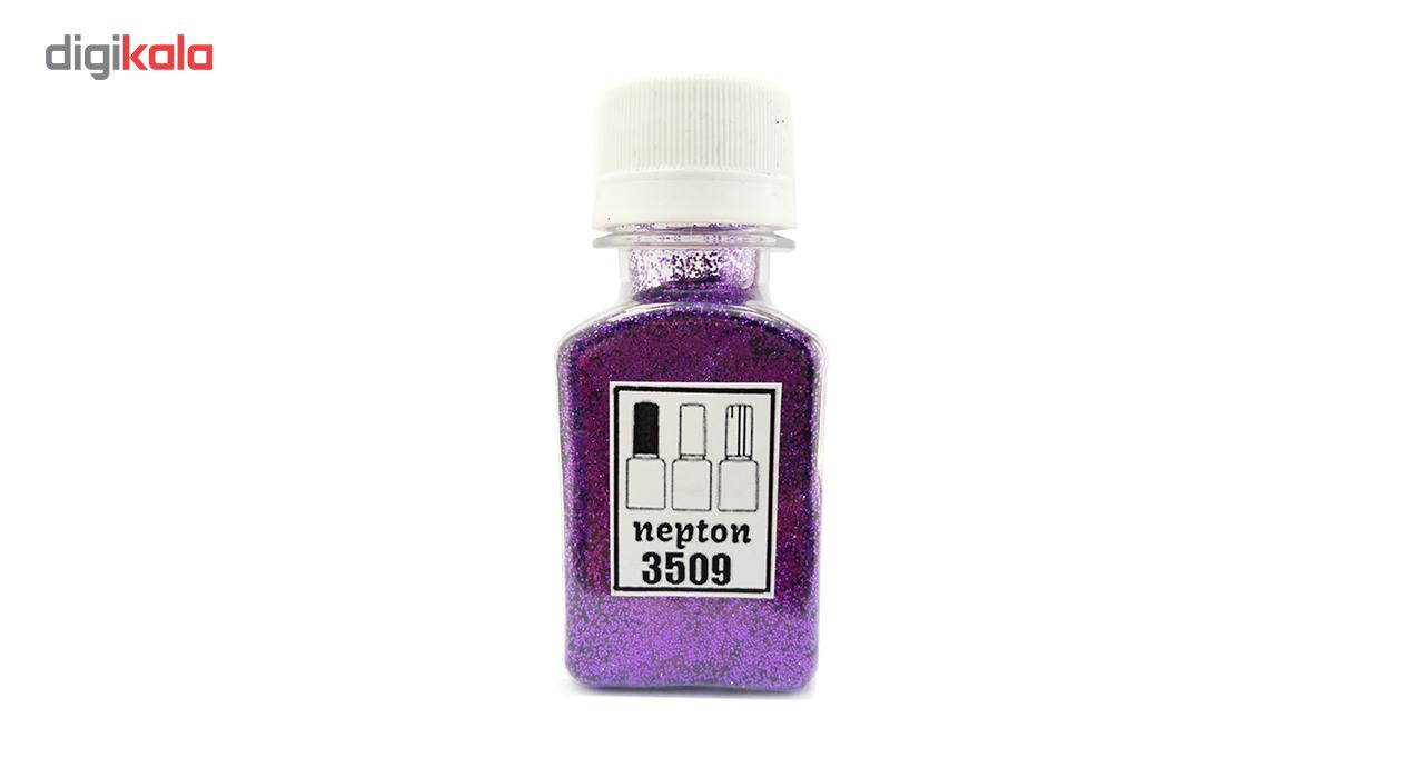 پودر اکلیل ناخن نپتون مدل Violet 3509