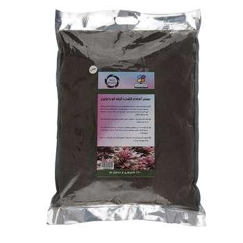 بستر آماده کشت گیاه کوردیلین گلباران سبز بسته 4 کیلوگرمی