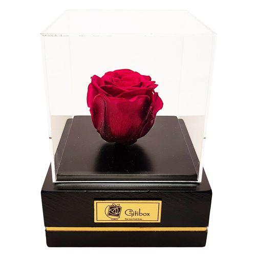 جعبه گل ماندگار گیتی باکس مدل رز جاودان قرمز تیره کاج