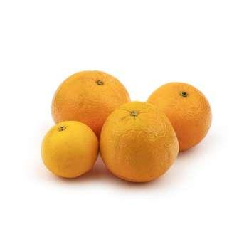 پرتقال تامسون شمال Fresh وزن 1 کیلوگرم