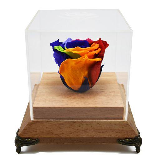 جعبه گل ماندگار رزا مدل رز جاودان رنگین کمان چوبی