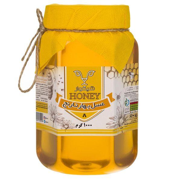 عسل بهار نارنج شیگوار - 1 کیلوگرم