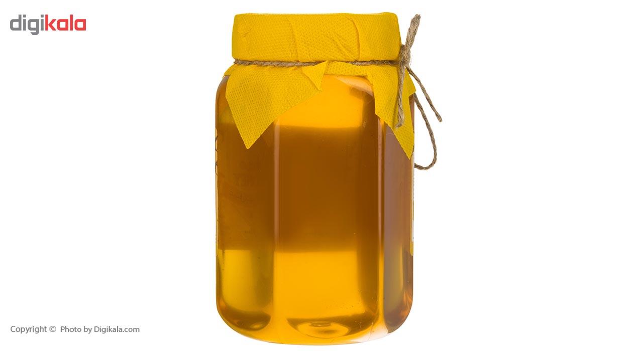 عسل بهار نارنج شیگوار - 1 کیلوگرم main 1 3