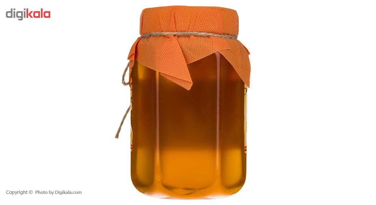 عسل گون شیگوار - 1 کیلوگرم main 1 2