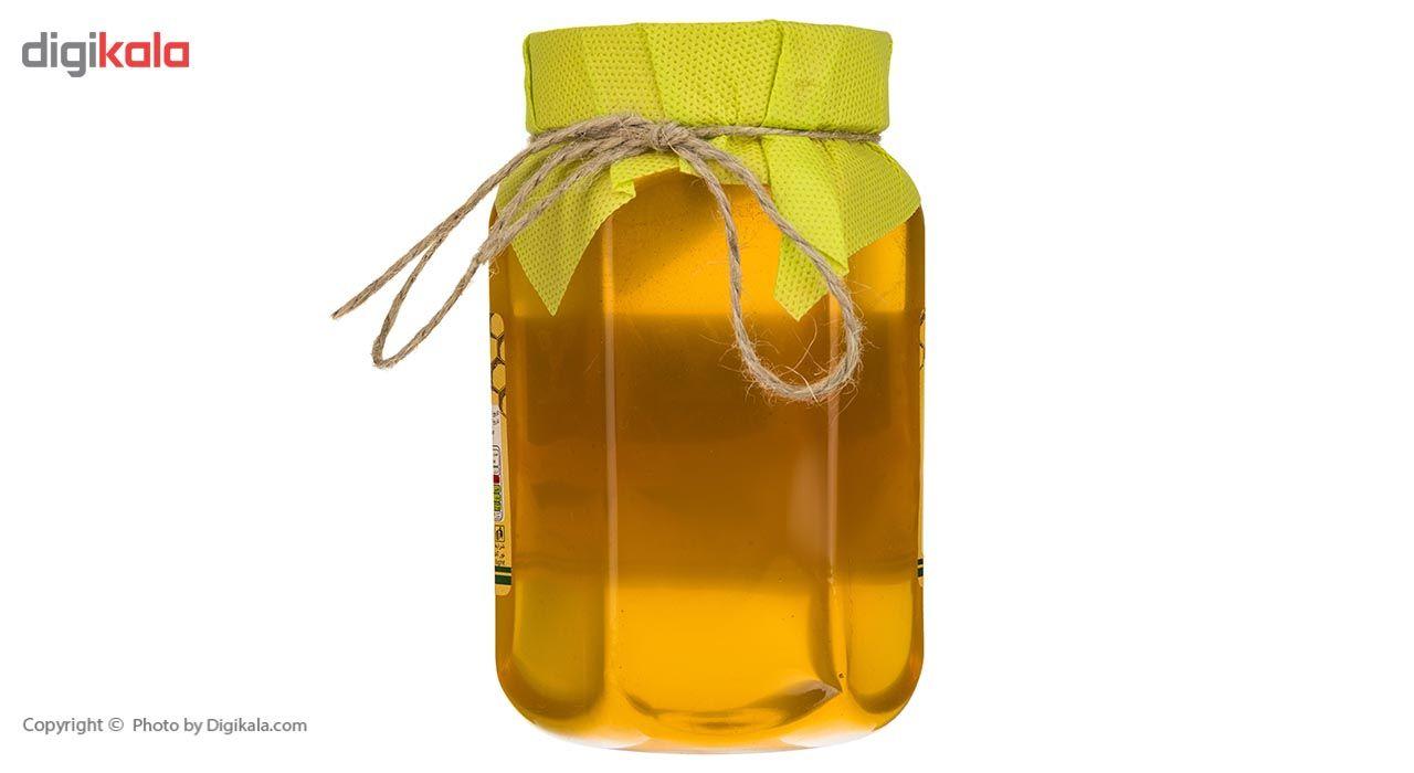 عسل هفت گیاه شیگوار - 1 کیلوگرم main 1 2