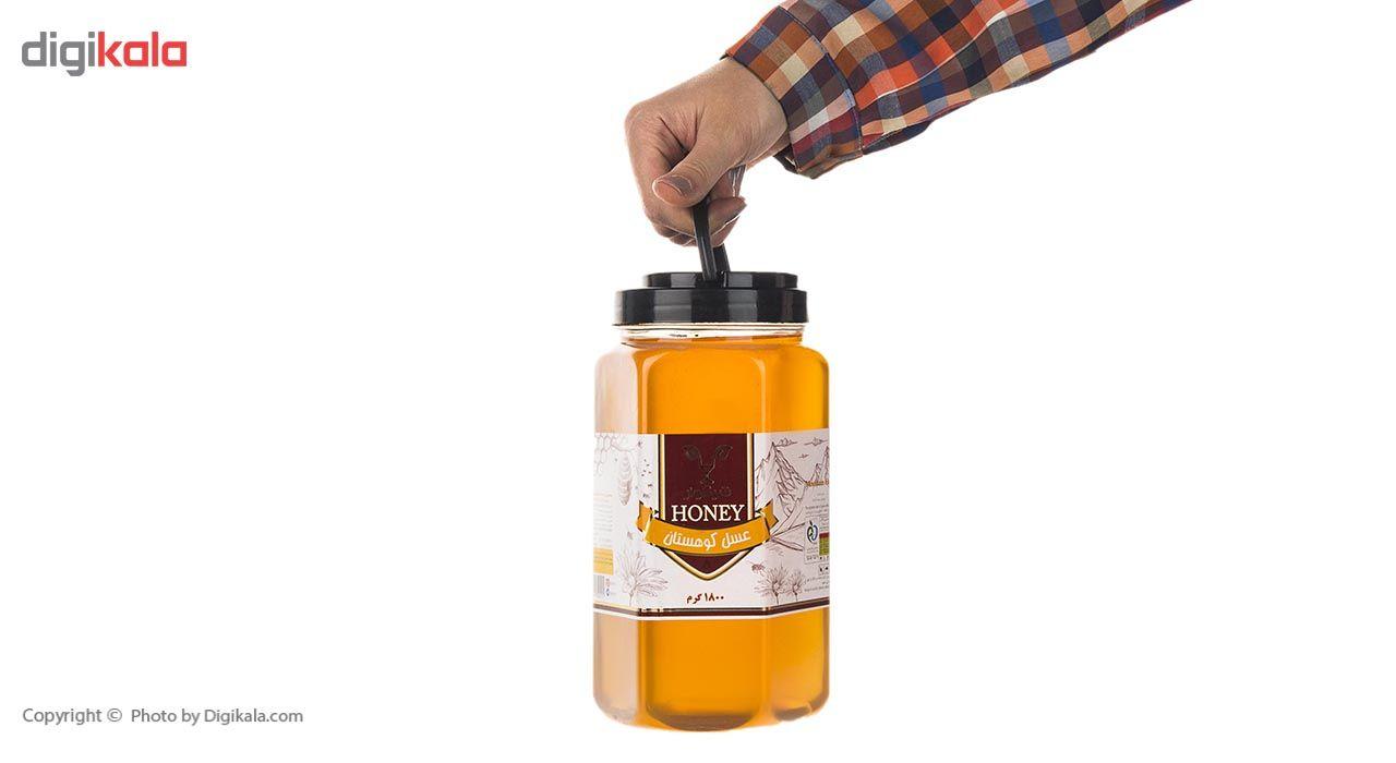 عسل کوهستان شیگوار - 1.8 کیلوگرم main 1 6