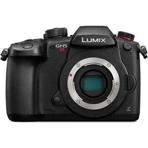 دوربین دیجیتال پاناسونیک مدل Lumix DC-GH5S