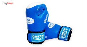 پکیج دستکش بوکس گرین هیل مدل (( تایگر ))همراه با یک عدد گارد لثه و ساک ورزشی
