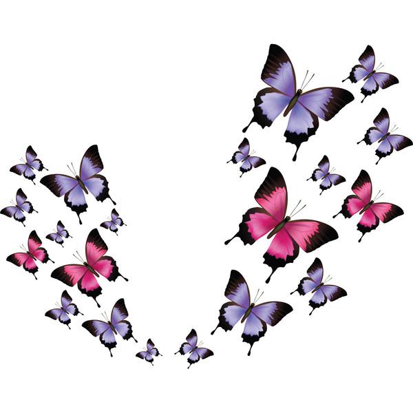 استیکر دیواری سالسو طرح پروانه ها m.z
