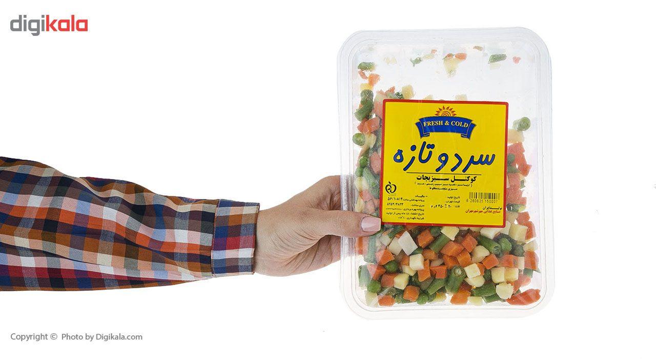 کوکتل سبزیجات منجمد سرد و تازه مقدار 450 گرم main 1 5