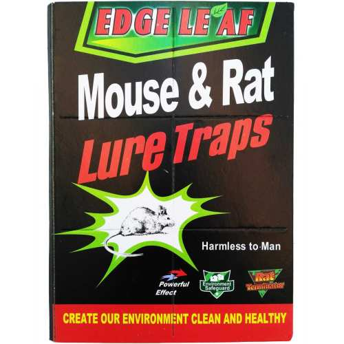 چسب تله موش مدل کتابی