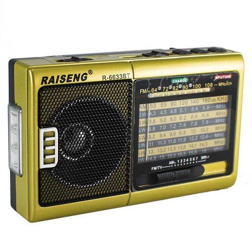 رادیو رایسنگ مدل R-6633BT