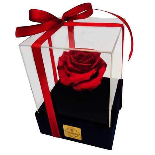 جعبه گل ماندگار دکوفیوره مدل رز جاودان بزرگ قرمز