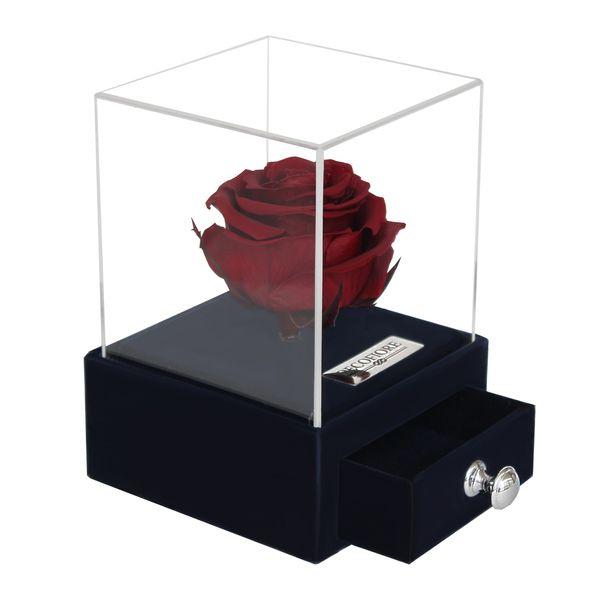 جعبه جواهرات و کارت هدیه رز جاودان مدل گل ماندگار دکوفیوره