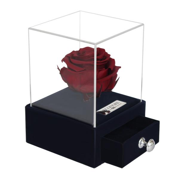 جعبه جواهرات و کارت هدیه رز جاودان مدل گل ماندگار دکوفیوره - به همراه پاكت مخصوص