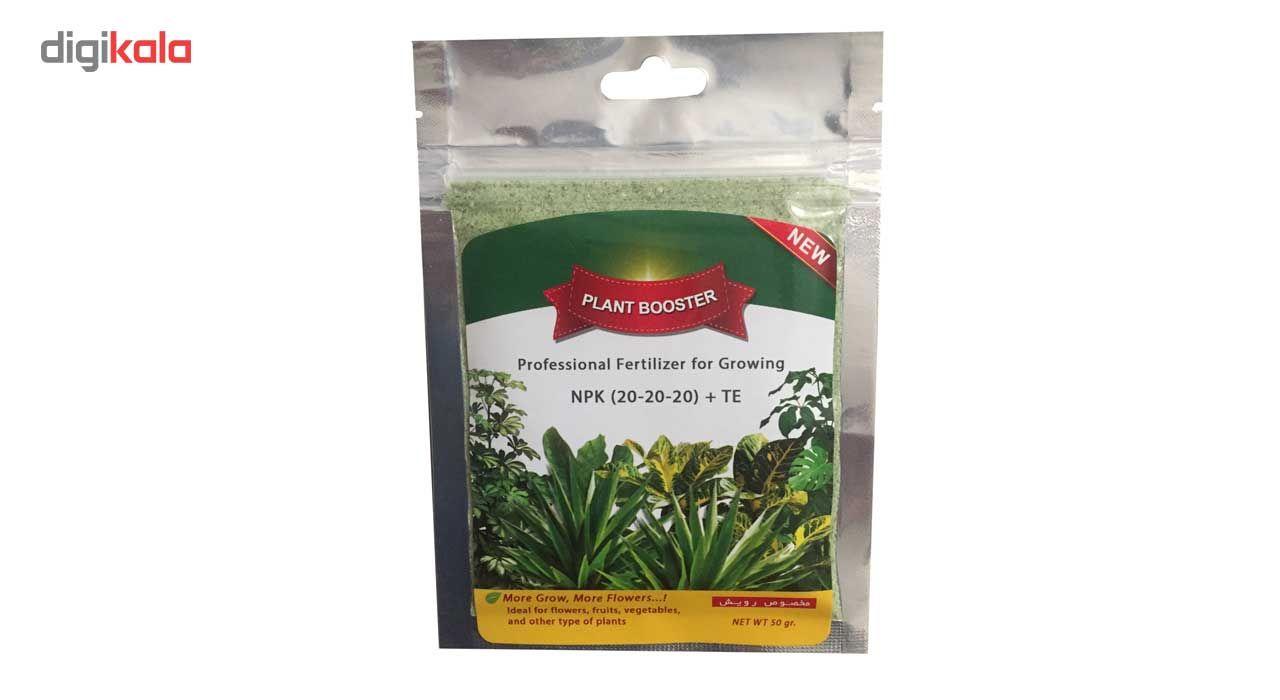 کود کامل پودری گرین دراپ مدل 20-20-20 مخصوص رشد رویشی و زایشی گل و گیاه خانگی بسته 50 گرمی main 1 1