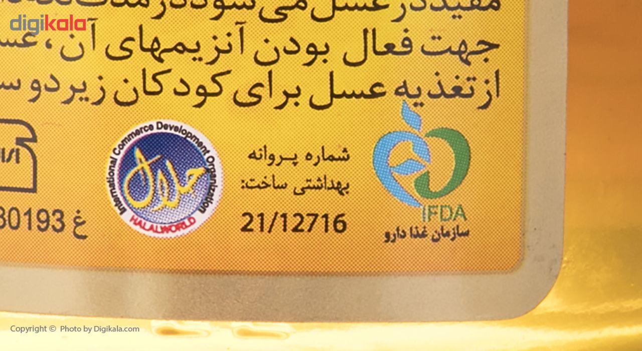 عسل طبیعی آذرکندو - 210 گرم main 1 4