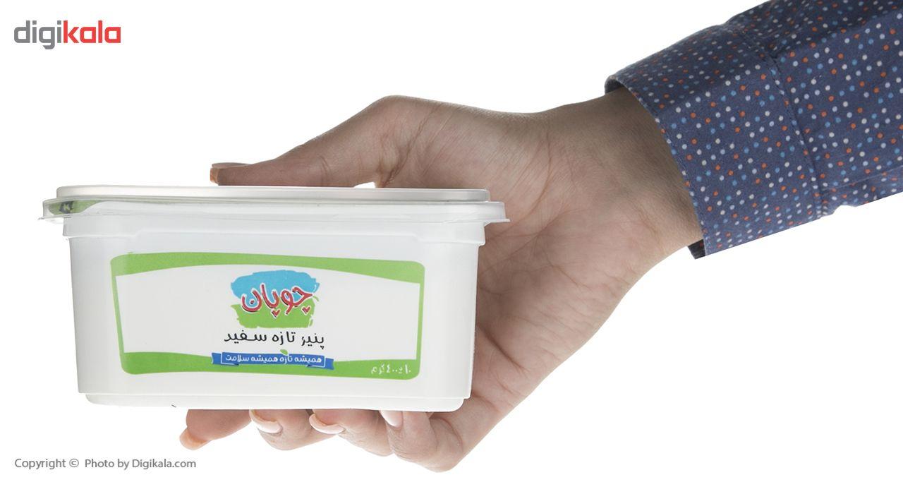 پنیر سفید چوپان مقدار 400گرم main 1 5