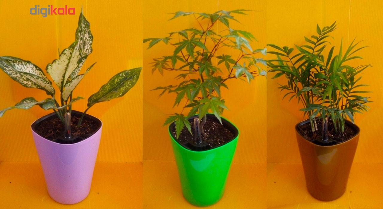 گلدان پلاستیکی خودآبرسان گلوین مدل CS1 main 1 2