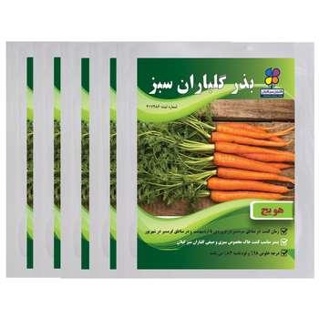 بذر هویج گلباران سبز بسته 5 عددی
