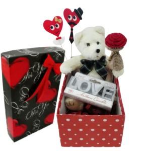 ست هدیه عروسک طرح خرس مدل Ndvs94