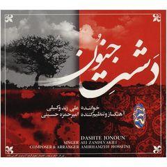 آلبوم موسیقی دشت جنون اثر علی زند وکیلی