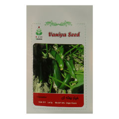 بذر خیار بوته ای آذر سبزینه مدل A4