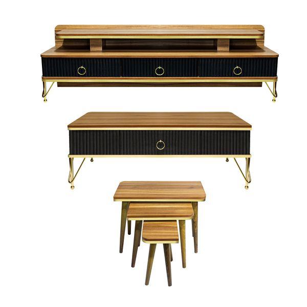 میز پذیرایی مدل 501 مجموعه 4 عددی به همراه میز تلویزیون