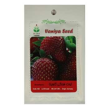 بذر توت فرنگی گاویتا آذر سبزینه مدل A17
