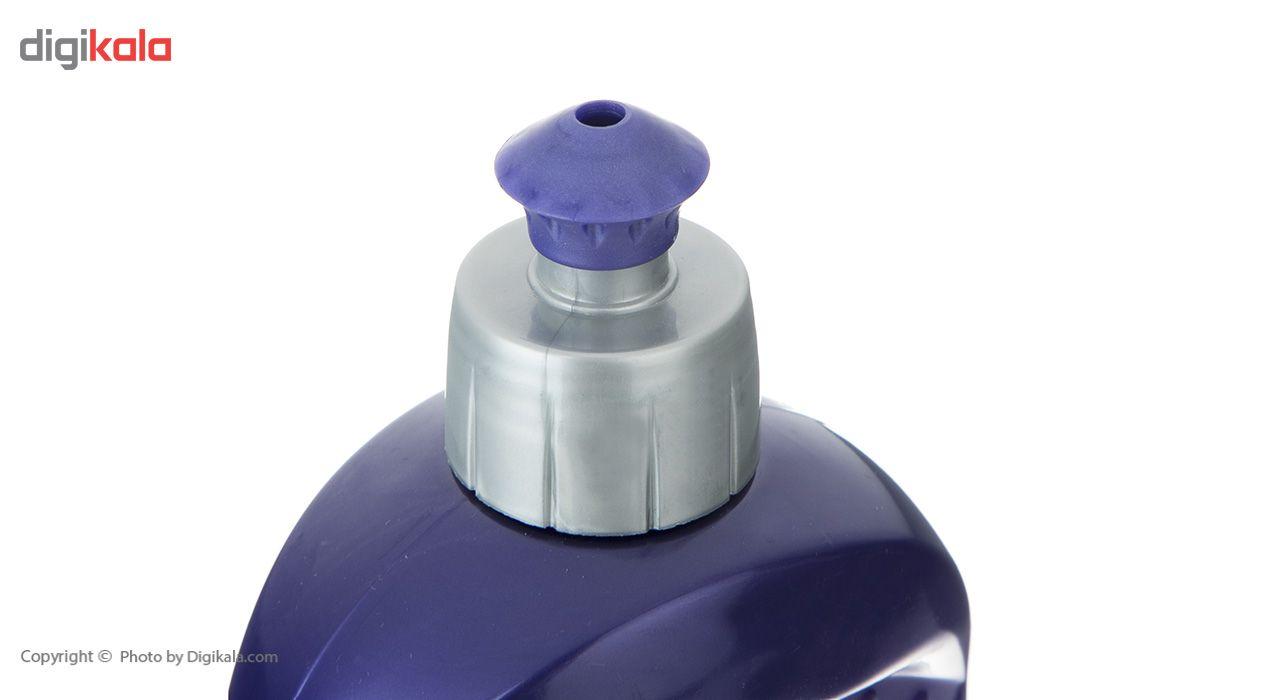مایع ظرفشویی اکتیو مدل Grape and Flower مقدار 750 گرم main 1 4