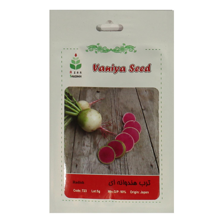 بذر ترب هندوانه ای آذر سبزینه A40