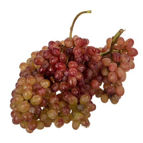 انگور قرمز مقدار 1 کیلوگرم