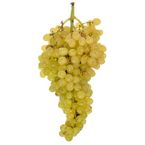 انگور سفید مقدار 1 کیلوگرم