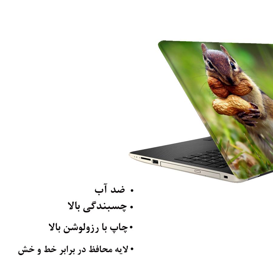 استیکر لپ تاپ فلوریزا طرح سنجاب مدل ML447 مناسب برای لپ تاپ 15.6 اینچ