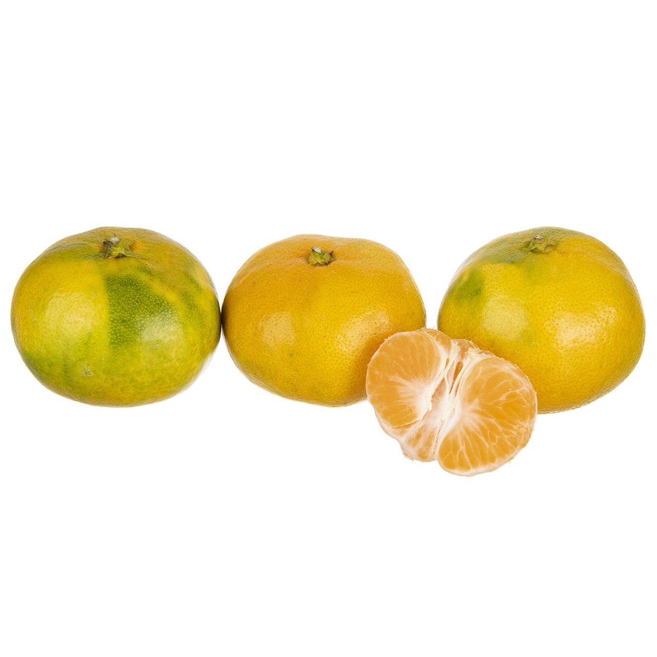نارنگی دست چین مقدار 1 کیلوگرم