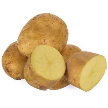 منتخب محصولات پربازدید صیفی و سبزیجات