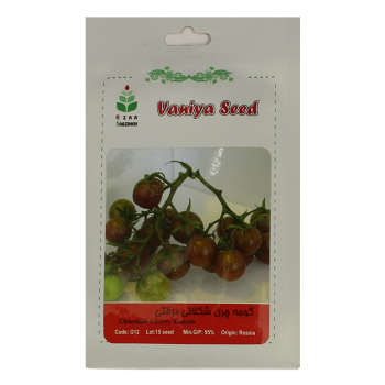بذر گوجه چری شکلاتی درختی آذر سبزینه مدل A67