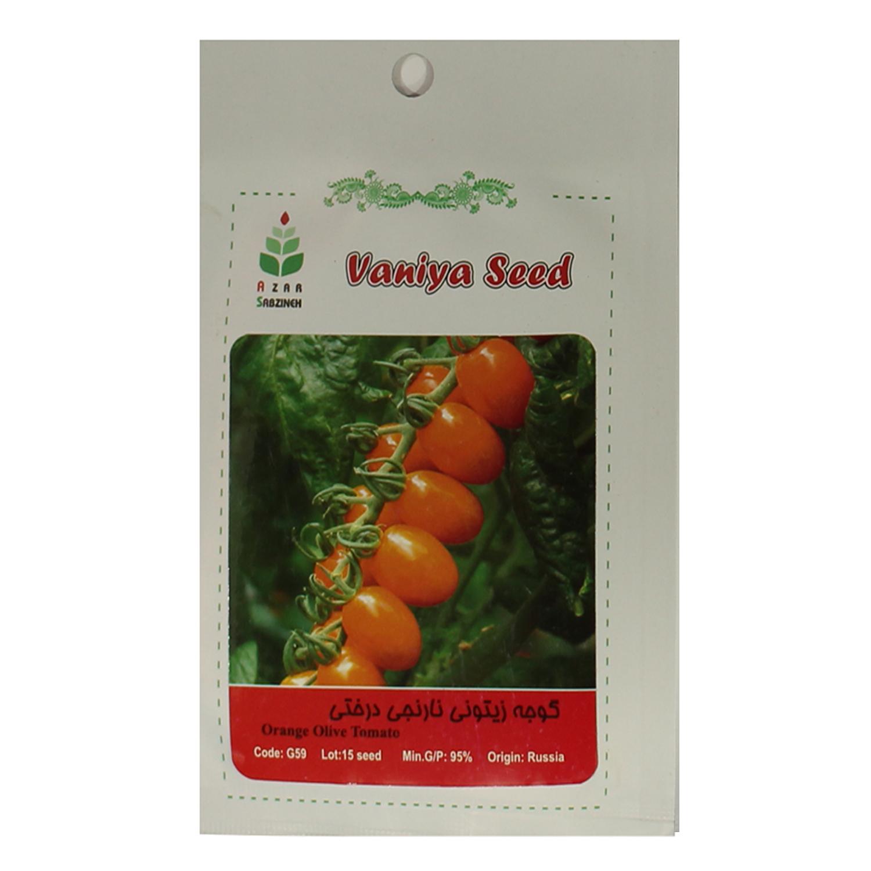 بذر گوجه زیتونی نارنجی درختی آذر سبزینه مدل A70