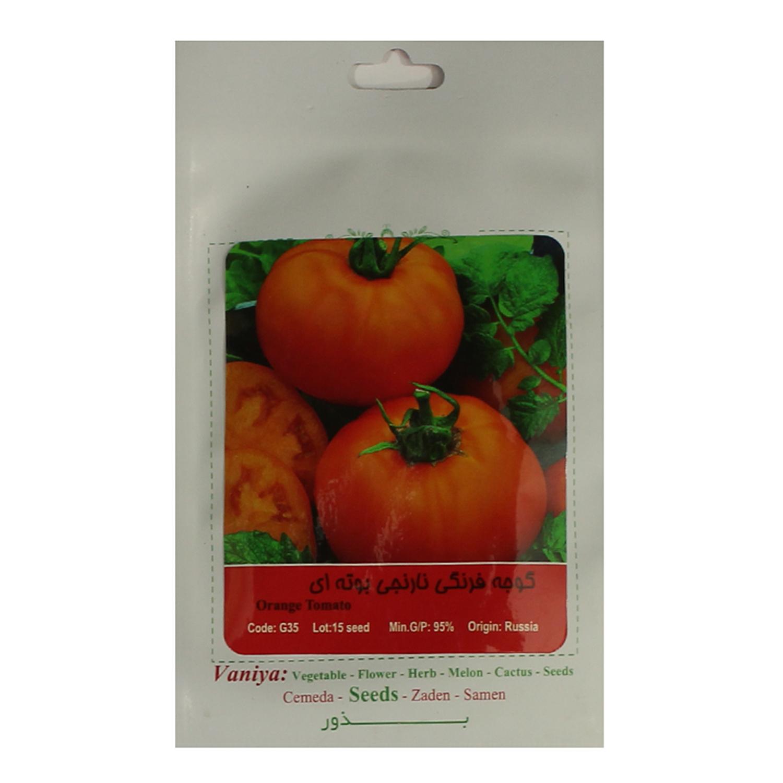 بذر گوجه فرنگی نارنجی بوته ای آذر سبزینه مدل A80