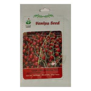 بذر گوجه چری قرمز درختی هیبرید آذر سبزینه مدل A104
