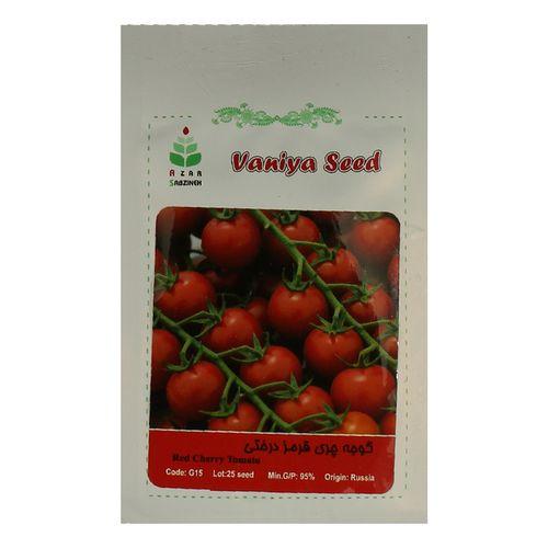 بذر گوجه چری قرمز درختی آذر سبزینه مدل A105