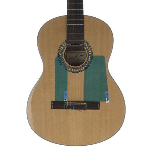 گلپیدور گیتار مدل Guitar Armor-F2