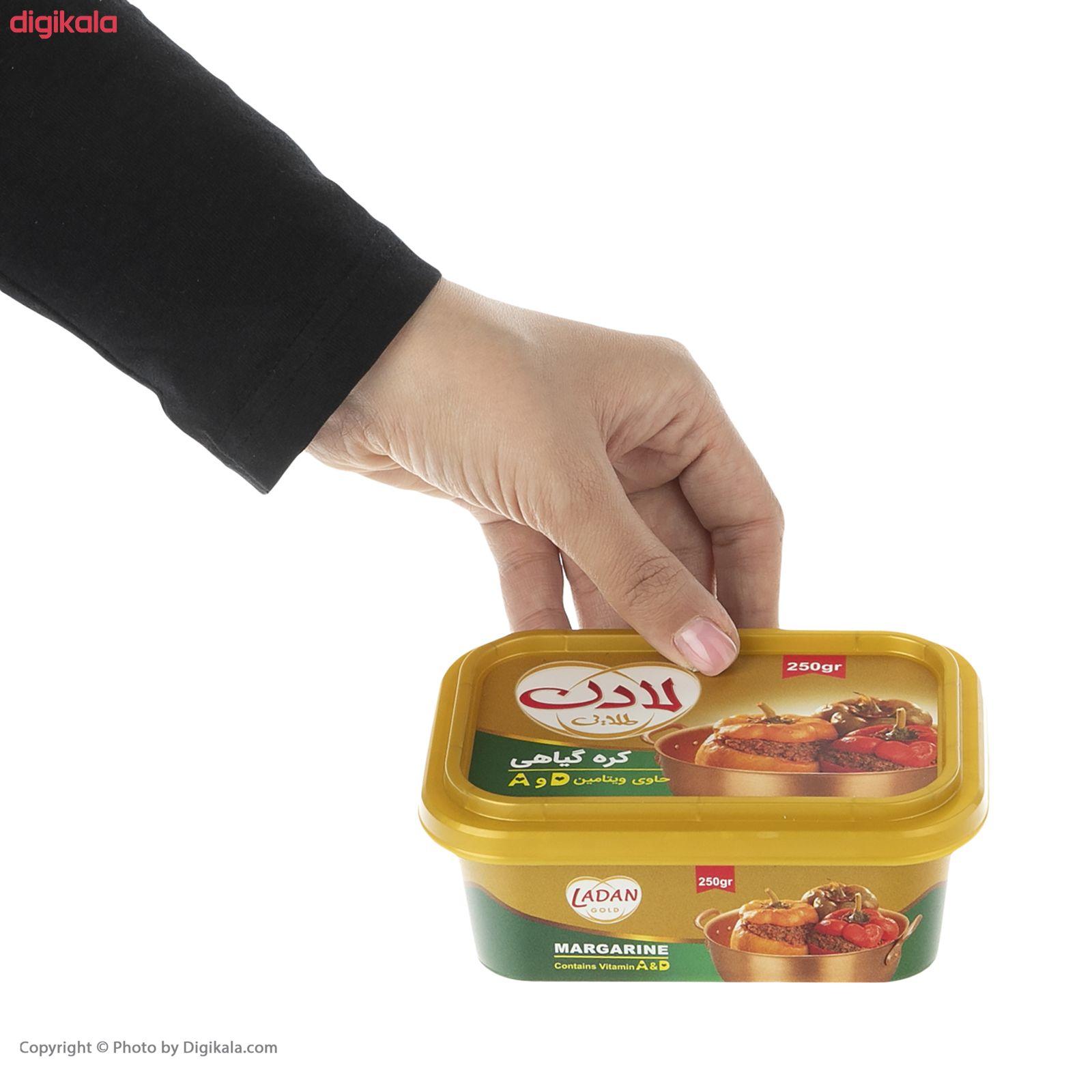 کره گیاهی لادن - 250 گرم  main 1 3