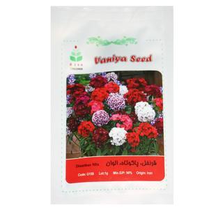 بذر گل قرنفل پاکوتاه الوان آذر سبزینه مدل A127