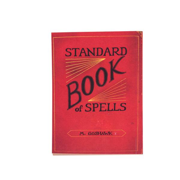 دفتر یادداشت بیگای استودیو طرح کتاب طلسم هری پاتر |
