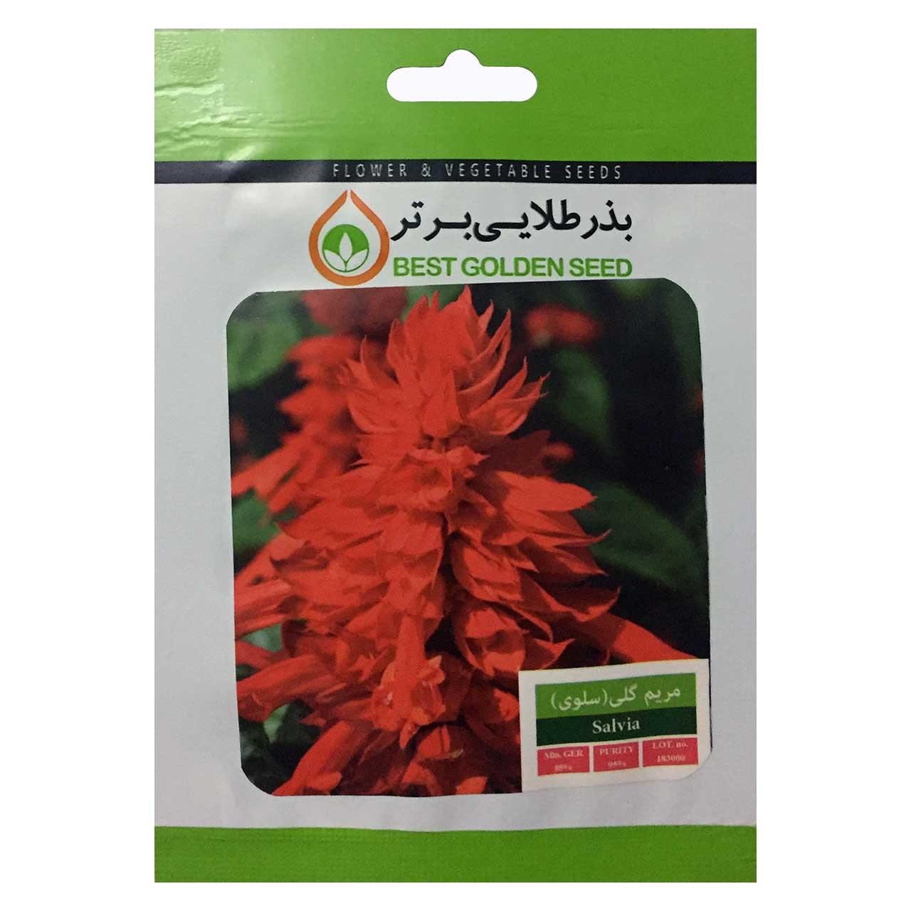 بذر گل مریم گلی ( سلوی ) بذر طلایی برتر کد BZT-18
