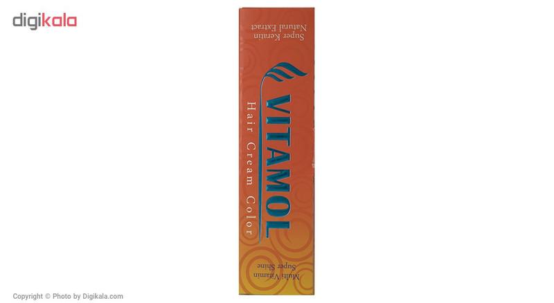 رنگ مو گیاهی ویتامول سری Ash مدل Brown شماره 4.1