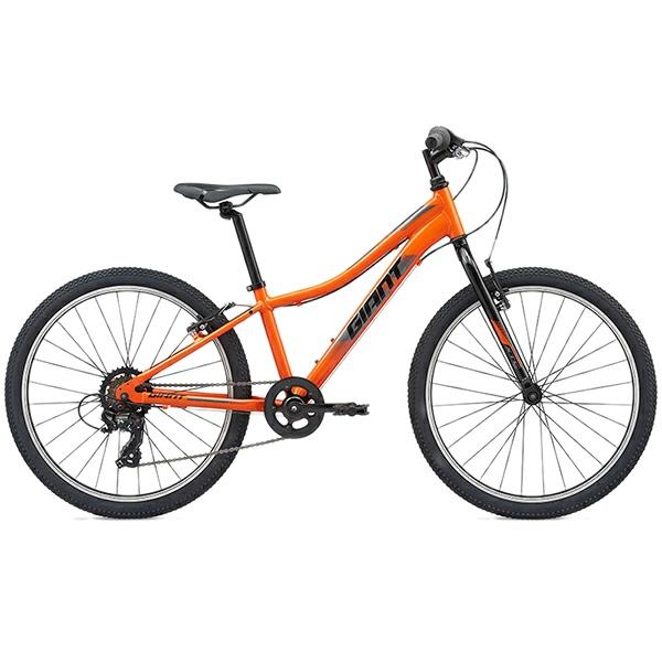 دوچرخه کوهستان جاینت مدل Xtc Jr سایز 24