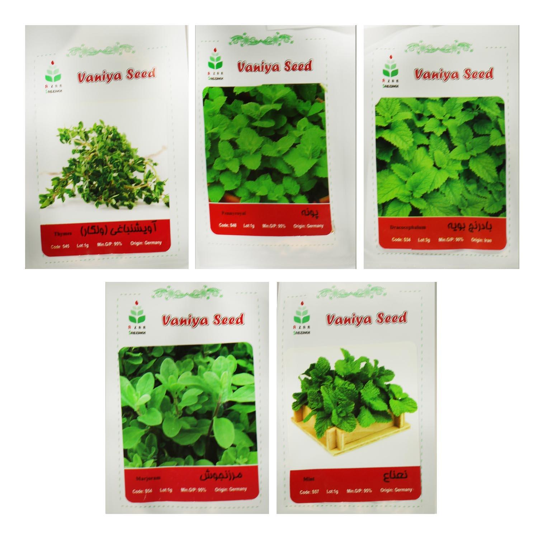 بذر سبزيجات ويژه آذر سبزينه مدل H16 مجموعه 5 عددي
