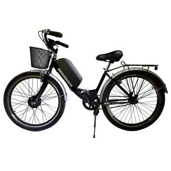 دوچرخه برقی هخامنش مدل کلاسیک-350 |